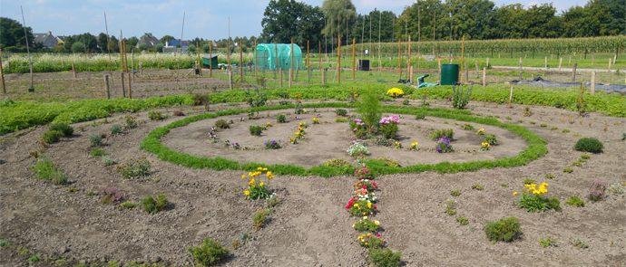 tuin ingericht als doolhof
